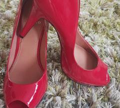 Cipele na petu NOVE