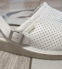 Kopitarna papuče
