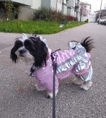 Izrađujemo odjeću za pse u raznim veličinama