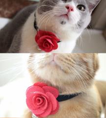 Ogrlica za mace - ruža