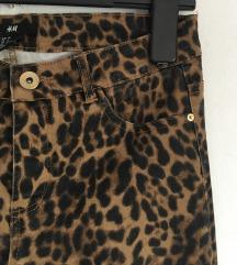 Leopard traperice