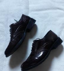 》Bordo cipele《