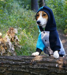 Dukserica za psa