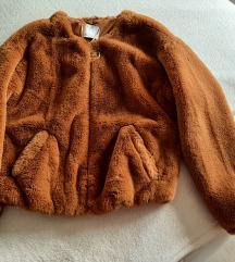 Tedi jaknica