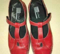 Šlape/špagerice/tenisice/cipele