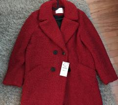 Novi  Zara Teddy