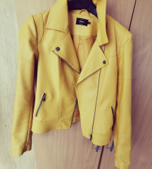 Only kožna jakna