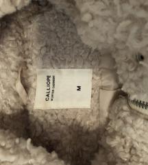 Calliope teddy bundica