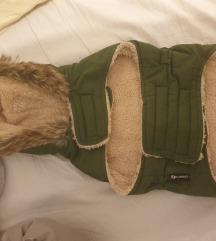 Nova jakna za psa vel S