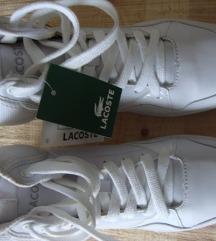 Danas 250 kn - Lacoste tenisice br. 39