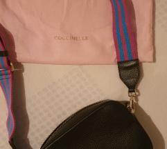 Coccinelle torba