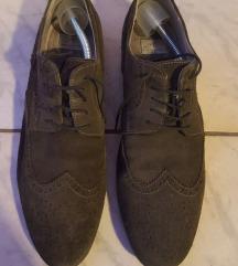 Muške sive cipele Pat Calvin, veličina: 43