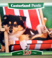 Castorland Puzzle -  Collie Puppy