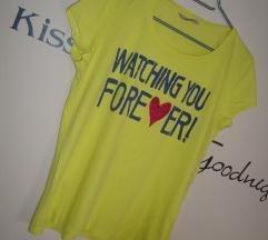 Amadeus majica