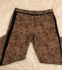 Guess tigraste hlače