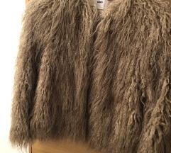 Asos cupava jakna