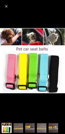 Pojas za psa (za automobil)