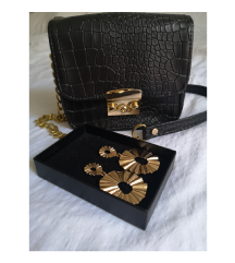 Naušnice i torbica