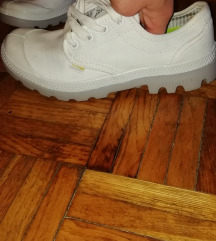 Palladium tenisice/cipele br 36
