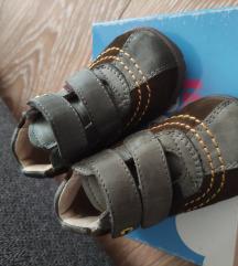 Froddo cipelice