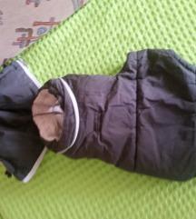 Zimska jaknica za manjeg psa