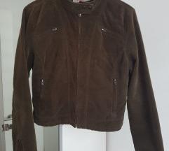 Maslinasta jaknica