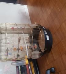 Krletka za ptice
