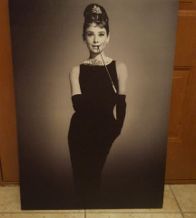 Slika Audrey Hepburn