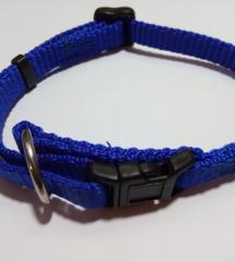 Nova ogrlica za psa