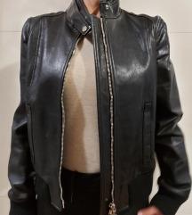 Dolce&Gabbana kožna jakna-ORIGINAL