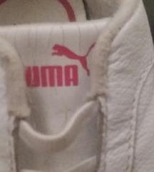 Tenisice Puma br.19
