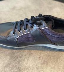 Muske Geox cipele
