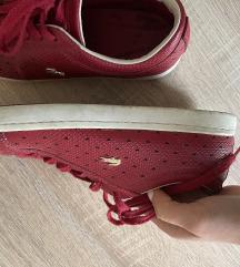 Lacoste crvene tenisice