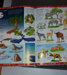 Slikovna enciklopedija