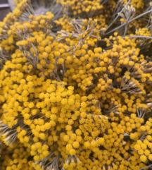Anti -age balzam od smilja u bademovom ulju